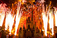 Wishes fireworks show (with Cinderella Castle behind), Magic Kingdom, Walt Disney World, Orlando, Florida USA