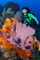 Dominica Caribbean photos