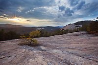 Winter sunset at Stone Mountain in North Carolina brings out the highlights of a lone pine tree clinging to life in the bare rock. Elkin, NC