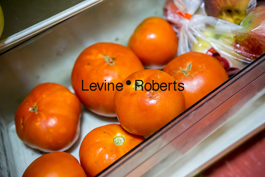 Tomatoes stored in a refrigerator in New York on Wednesday, October 19, 2016. A study by the University of Florida found that the old adage of keeping your tomatoes out of the refrigerator is correct. The report states that cold storage reduces the flavor of the fruit by affecting its genetics.  (© Richard B. Levine)
