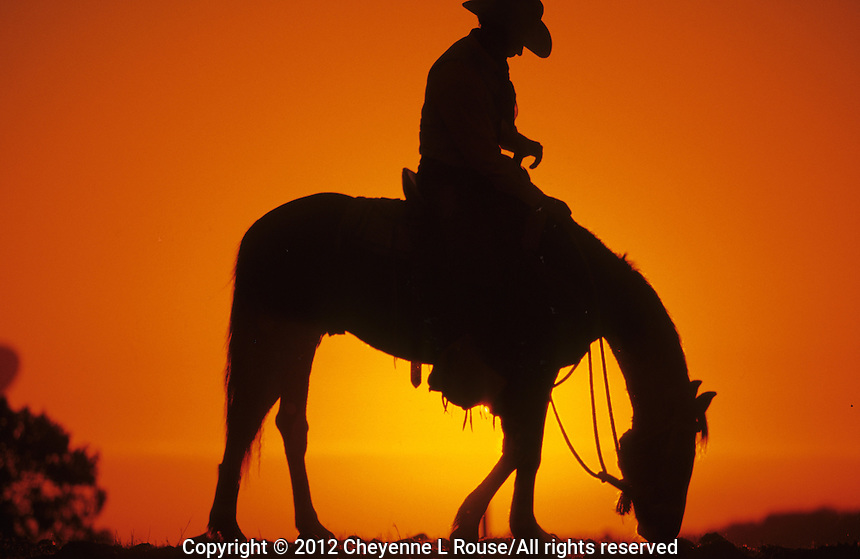 Sunset silhouette of an old western icon, the cowboy in Arizona (MR)