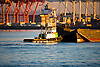 A tug boat in Seattle's Elliott Bay manuevers a barge toward Harbor Island at the mouth of the Duwamish River.
