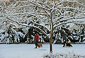 January 24, 2012, Tokorozawa, Japan - Residents walk their dogs in a snow-covered park in Tokorozawa, Tokyos western bedtown suburb, on Tuesday, January 24, 2012. Snow fell in the Metropolitan Tokyo area from Monday night through early Tuesday morning, causing disruption of transportation services and people to slip and suffer injuries. (Photo by Natsuki Sakai/AFLO) AYF -mis-