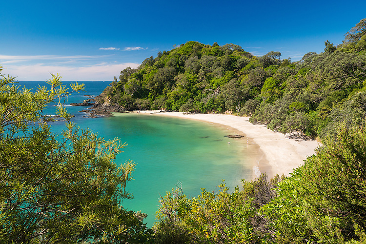 Whale Bay, Tutukaka Coast, North Island, New Zealand - stock photo, canvas, fine art print