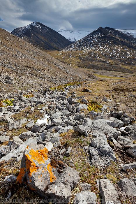Brooks range mountains in Atigun Canyon, arctic, Alaska.