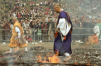 Yamabushi or mountain priests in Yellow and purple robes walk across the embers of a large bonfire of ceder branches during the Hi Watari, fire walking, festival in Takao san Guchi near Tokyo, Japan. Sunday March 11th 2007