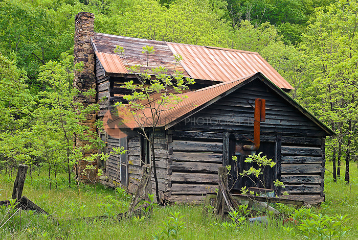 Old chinked log house with stone chimney and tin roof in rural West Virginia