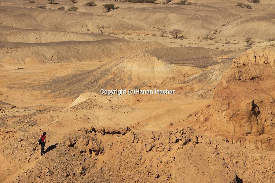 Israel, Arava region, a view of Nahal Hatzeva from Hatzeva Hill