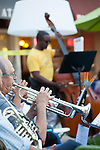 An orchestra members plays his trumpet during The Terrible Adult Chamber Orchestra's (TACO) August 2 performance on the State Street Green.