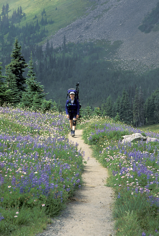 Woman hiking on trail through meadows, Mount Rainier National Park, Washington