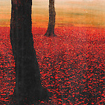 """From the Passionate Earth Series -- decorative nature photos, each with an element of """"red."""""""