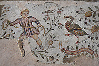 Detail of a mosaic depicting a boy and a duck  with plants in the peristyle of the Villa of the Aviary Carthage, Tunisia, pictured on January 30, 2008, in the morning. Carthage was founded in 814 BC by the Phoenicians who fought three Punic Wars against the Romans over this immensely important Mediterranean harbour. The Romans finally conquered the city in 146 BC. Subsequently it was conquered by the Vandals and the Byzantine Empire. Today the site is a UNESCO World Heritage. The Roman Villa of the Aviary, with its octagonal garden set in a peristyle courtyard, is known for its fine mosaics depicting birds. Picture by Manuel Cohen.