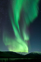 Green and violet bands of aurora borealis, or northern lights swirl over the mountain ridges of the Brooks range, arctic, Alaska.