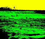 Yellowgreen 1