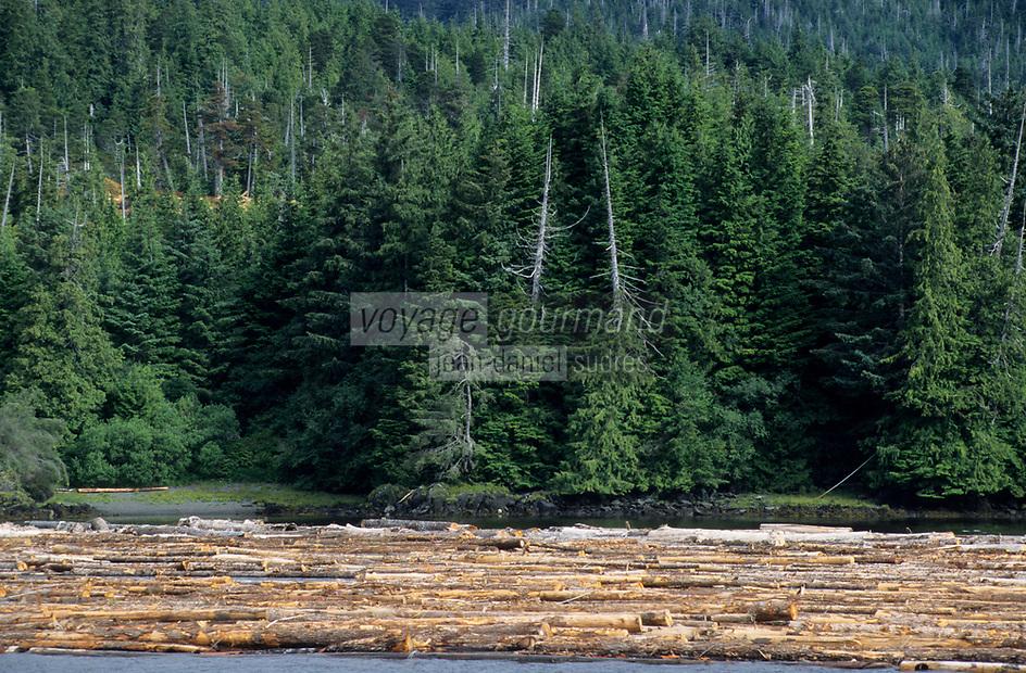 USA/Etats-Unis/Alaska/Env de Ketchikan : Train de bois flottant - Exploitation forestière
