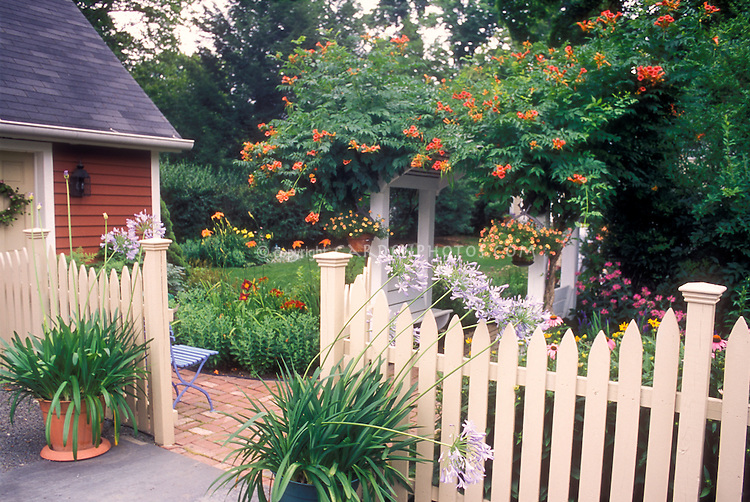 Beautiful entrance into garden, lush easy backyard landscaping with flowers, vine, containers: Campsis Trumpet flower climbing vine, Daylilies, fence, summer flowering bulbs agapanthus, pot containers, Calibrachoa, in lots of hot colors, picket fence, brick walkway, shed, great mixture of perennial and annual plants and flowers