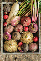 Different varieties of beetroot in a wooden box