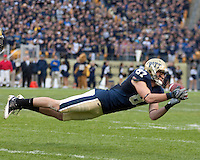 Pittburgh wide receiver Mike Shanahan makes a diving catch. The Pittsburgh Panthers defeated the South Florida Bulls 41-14 at Heinz Field, Pittsburgh, PA on October 24, 2009.