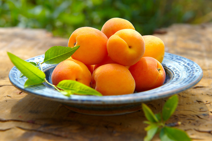 Food Photo of Apricots