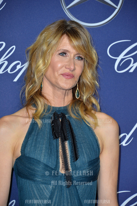 Actress Laura Dern at the 2017 Palm Springs Film Festival Awards Gala. January 2, 2017<br /> Picture: Paul Smith/Featureflash/SilverHub 0208 004 5359/ 07711 972644 Editors@silverhubmedia.com