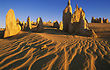 Pinnacles in Nambung National Park; Western Australia, Australia