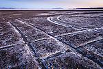 Tracks in the mud on the playa of Sevier Lake, Utah