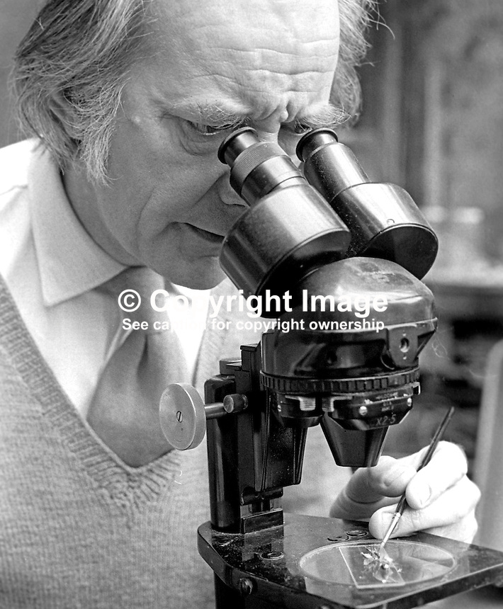 Raymond Piper, born London, lived Belfast, N Ireland, since he was six years old, artist, botanist, not only did he paint orchids he grew them in his own garden so they would be fresh for drawing or painting. He also examined them in great detail using a microscope. 197510060675f<br /> <br /> Copyright Image from Victor Patterson, 54 Dorchester Park, Belfast, UK, BT9 6RJ<br /> <br /> t: +44 28 90661296<br /> m: +44 7802 353836<br /> vm: +44 20 88167153<br /> e1: victorpatterson@me.com<br /> e2: victorpatterson@gmail.com<br /> <br /> For my Terms and Conditions of Use go to www.victorpatterson.com