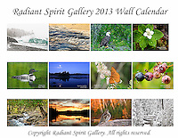 2013 Wall Calendar by Radiant Spirit Gallery...images and reflections echoing the wilderness.<br /> SOLD OUT FOR 2013; contact us for special orders. Watch for next year's calendar.<br /> <br /> Beautiful images of Northern Minnesota landscapes, flora, and fauna. Created by the husband and wife photography team of Gary L. Fiedler and Dawn M. LaPointe of Radiant Spirit Gallery. 12-month wall calendar measures 17&quot;x11&quot; when hanging, 11&quot;x8.5&quot; when folded.