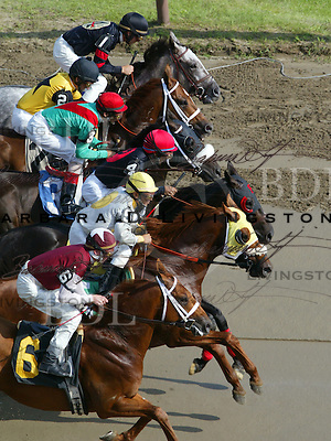 Saratoga racing, 7/28/04.