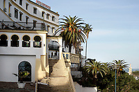 Hotel Continental, Tangier, Morocco pictured on December 17, 2009. A staircase, its angles emphasized by sun and shade, leads to a terrace with palm trees at this gracious traditional Hotel.  Tangier, the 'White City', gateway to North Africa, a port on the Straits of Gibraltar where the Meditaerranean meets the Atlantic is an ancient city where many cultures, Phoenicians, Berbers, Portuguese and Spaniards have all left their mark. With its medina, palace and position overlooking two seas the city is now being developed as a tourist attraction and modern port. Picture by Manuel Cohen