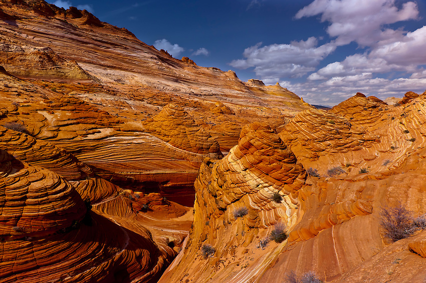 Coyote Buttes North, Paria Canyon-Vermillion Cliffs Wilderness Area, Utah-Arizona border, USA
