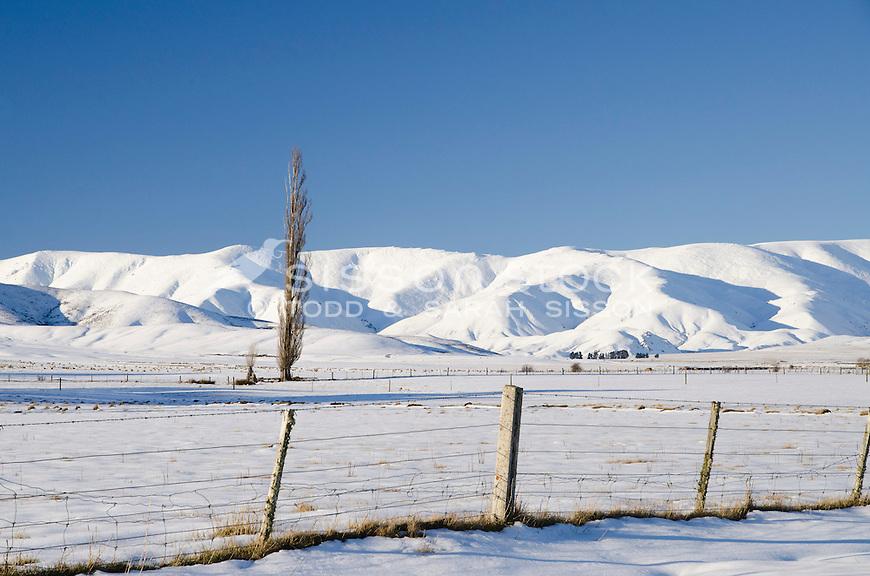 Snow covers paddocks  and the Hawkdun ranges near Wedderburn, in mid winter Central Otago, South Island