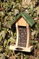 Vogel-Futterhäuschen, mit Sonnenblumen-Kernen gefüllt, Futterhaus, Futterhäuschen, Vogelfutter
