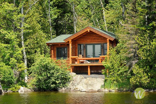 Cabin Terry Wild Stock