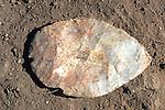 Tool - Artifact