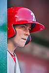 23 May 2015: Philadelphia Phillies guest Bat Boy John Proefrock watches play from the dugout during a game against the Washington Nationals at Nationals Park in Washington, DC. The Phillies defeated the Nationals 8-1 in the second game of their 3-game weekend series. Mandatory Credit: Ed Wolfstein Photo *** RAW (NEF) Image File Available ***