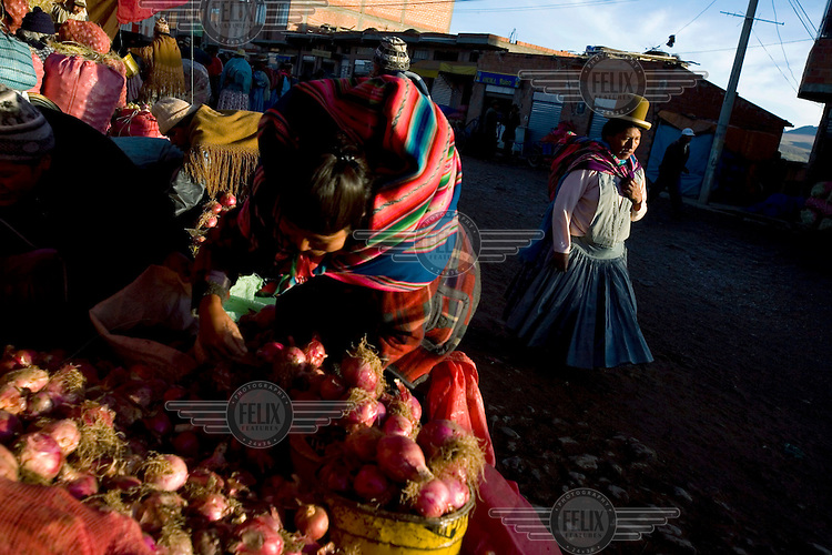 Women wearing traditional clothing buy vegetables from a market in El Alto...