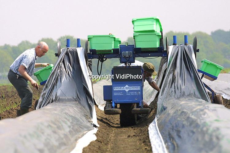 Foto: VidiPhoto..OTTERLO - Aspergeteler G. van den Broek uit Otterlo oogst de asperges met een gloednieuwe aspergeplukmachine. De machine is een nieuw fenomeen in de aspergewereld. De machine tilt automatisch het plastic op, waardoor veel tijd en dus geld wordt bespaard. Volgens Van den Broek kan hij nu twee keer zo snel oogsten. Bovendien 'draagt' de machine de kisten met asperges en hoeft de plukker die niet meer te slepen. Van den Broek heeft drie machines aangeschaft.