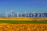 Windmills #27
