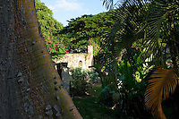 The sugar mill ruins at Estate Washington<br /> St. Croix US Virgin Islands