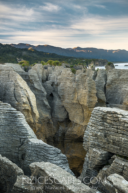 Weathered limestone formations in Punakaiki, Paparoa National Park, Buller Region, West Coast, New Zealand, NZ