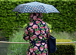 A lady looks at a flower display at the RHS Chelsea Flower Show in London