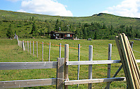 Fire Velve-gårder i Øverbygda i Selbu har voll på Svenskmoen, det vil si innunder Fongen i Roltdalen.  Foto: Bente Haarstad Svenskmoen.