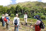 Hawaii: Molokai, Halawa Valley, with hike in past taro fields, ancient walls, to waterfalls, guided by Lawrence Aki..Photo himolo220-72394..Photo copyright Lee Foster, www.fostertravel.com, lee@fostertravel.com, 510-549-2202