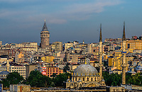 Fine Art Print Photograph of the Istanbul Skyline during a golden sunset on the Bosphorus Strait in Istanbul Turkey.