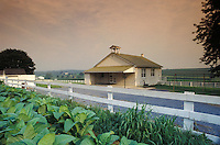 One room amish school house along Snake Hill Road, Lancaster County, PA. Field of fresh tobacco plants.