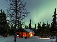 The northern lights dance over a rustic log cabin nestled among spruce trees in the Alaska Range mountains.