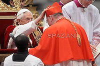 US cardinal Timothy Michael Dolan  , Pope Benedict XVI leads the Consistory where he will appoint 22 new cardinals on February 18, 2012 at St Peter's basilica at the Vatican.