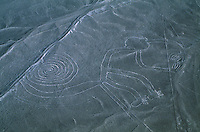 Monkey figure in an aerial of the Nazca lines which are only visible from the air.  Some are animal shapes are 90 to 180 meters long.  The most popular thought is that they were made by the Nazca and Paracas cultures during the period between 900 BC and 600 AD.  Maria Reiche, a German mathematician who spent much of her life studying the lines considers the lines to be an astronomical calendar for agricultural purposes.  They are made by exposing lighter colored soil when sun-baked stones were piled.