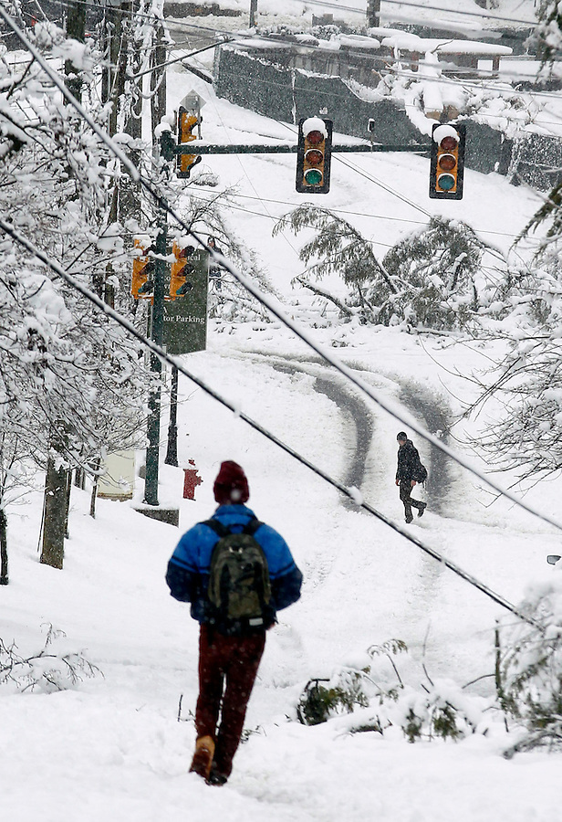 A massive snowstorm blanketed the area Wednesday in Charlottesville, VA.  Photo/Andrew Shurtleff